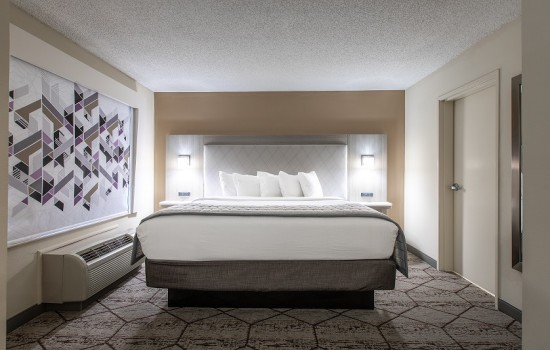 Welcome To Wingate by Wyndham Concord Charlotte Area Hotel - King Room