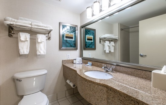Welcome To Wingate by Wyndham Concord Charlotte Area Hotel - Private Bathroom