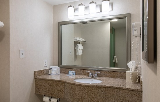 Welcome To Wingate by Wyndham Concord Charlotte Area Hotel - Vanity Area